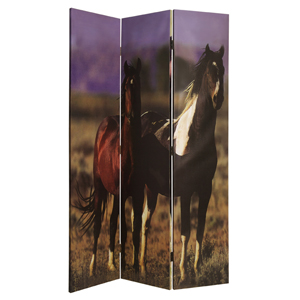 Thoroughbred Three Panel Screen
